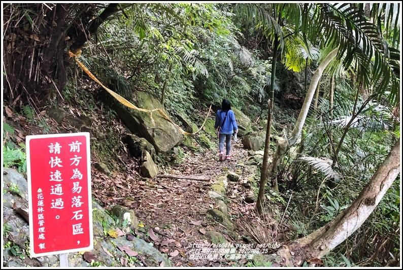 林田山林業文化園區步道-2020-03-103.jpg