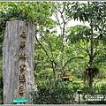 花蓮林務局南華工作站桐花-2020-03-01.jpg