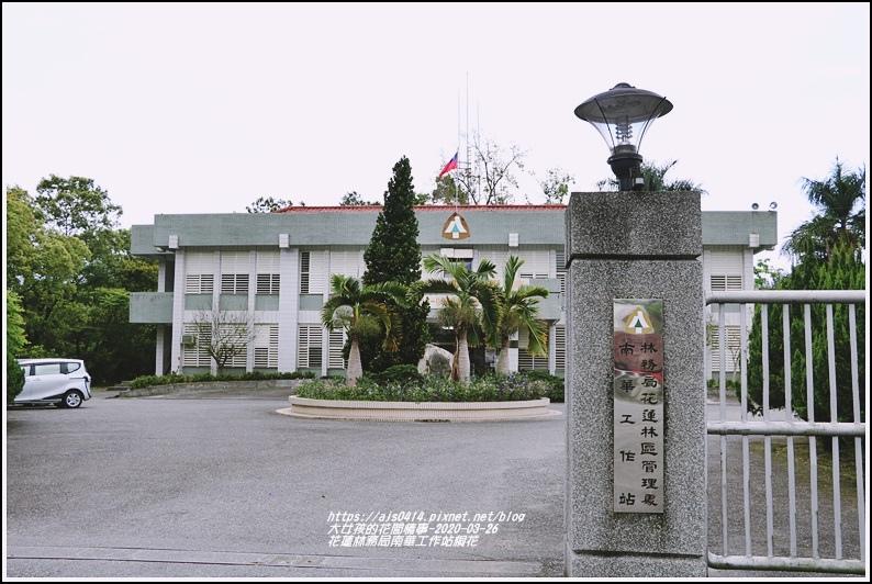 花蓮林務局南華工作站桐花-2020-03-89.jpg