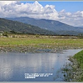 玉里啟模濕地-2020-03-10.jpg