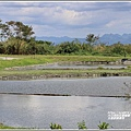 玉里啟模濕地-2020-03-17.jpg