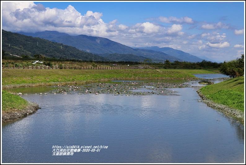 玉里啟模濕地-2020-03-12.jpg