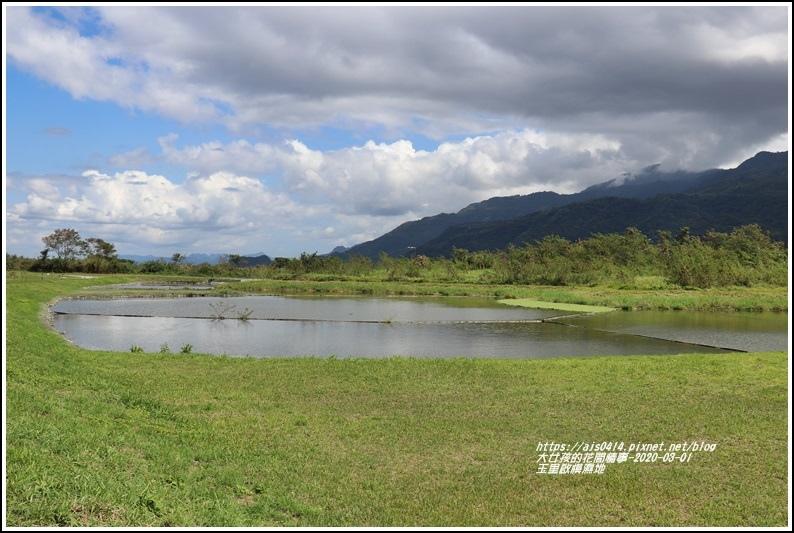玉里啟模濕地-2020-03-18.jpg