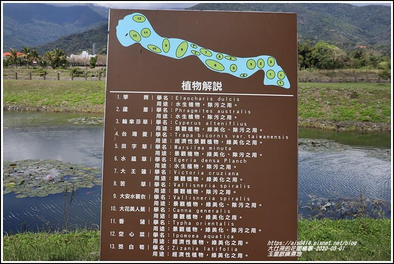 玉里啟模濕地-2020-03-24.jpg