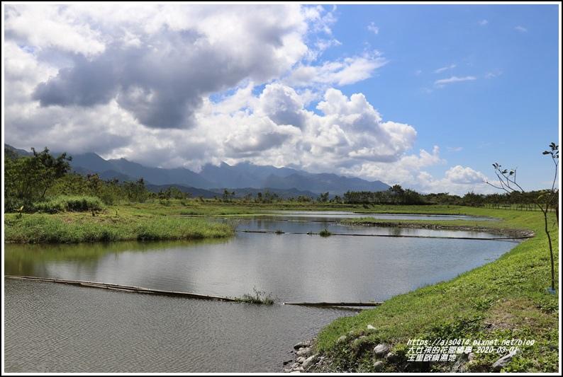 玉里啟模濕地-2020-03-33.jpg