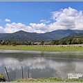 玉里啟模濕地-2020-03-37.jpg