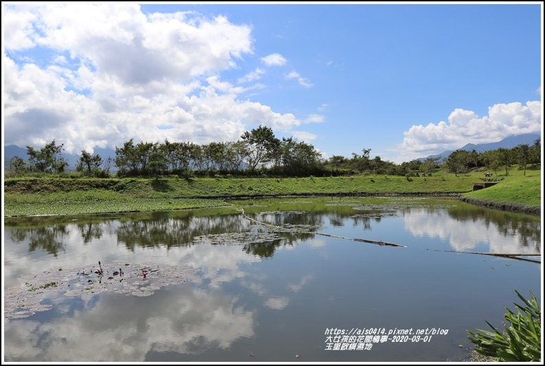 玉里啟模濕地-2020-03-52.jpg