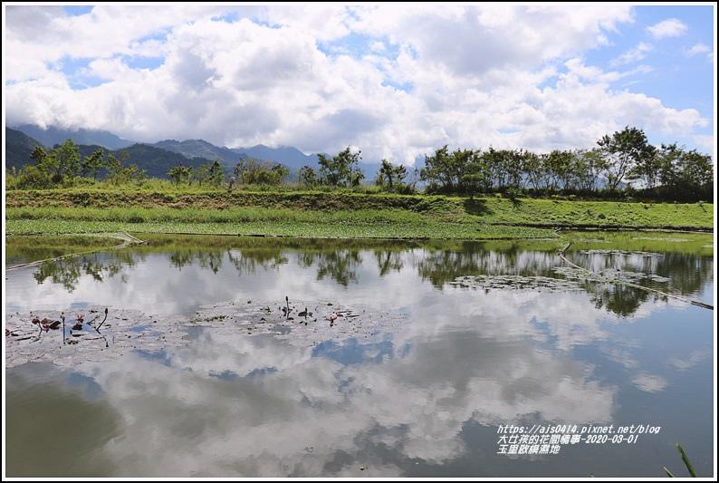 玉里啟模濕地-2020-03-51.jpg