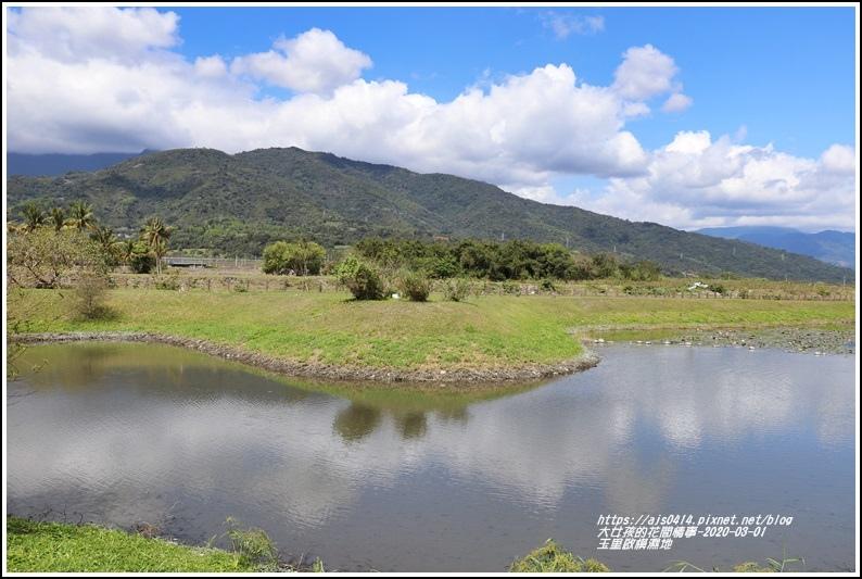 玉里啟模濕地-2020-03-55.jpg