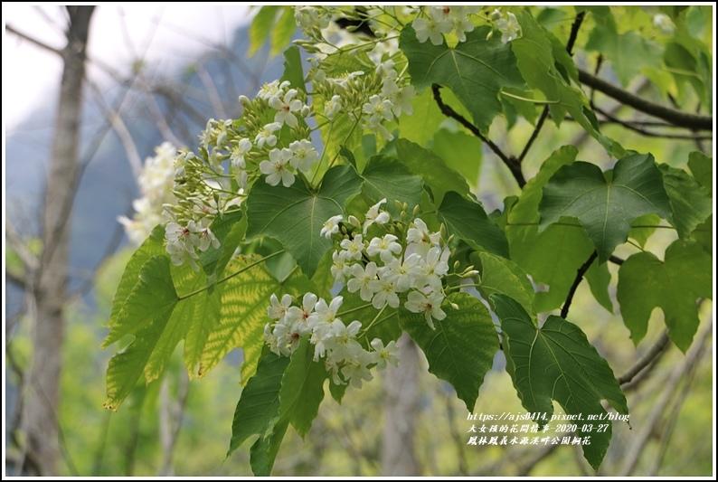 鳳林鳳義水源溪畔公園-2020-03-20.jpg