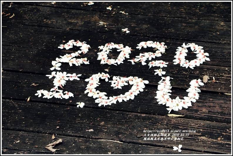 鳳林鳳義水源溪畔公園-2020-03-32.jpg