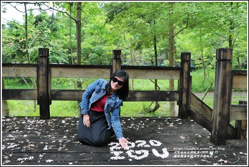 鳳林鳳義水源溪畔公園-2020-03-33.jpg