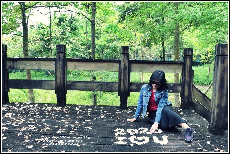 鳳林鳳義水源溪畔公園-2020-03-34.jpg