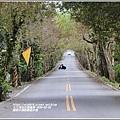 鳳林水源路楓香步道-2020-02-11.jpg