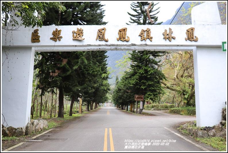 鳳林櫻花步道-2020-02-45.jpg