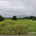 光復馬太鞍濕地-2020-04-03.jpg