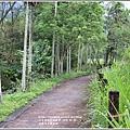 光復馬太鞍濕地-2020-04-08.jpg