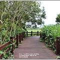 光復馬太鞍濕地-2020-04-12.jpg