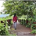 光復馬太鞍濕地-2020-04-14.jpg