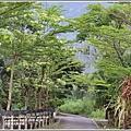 光復馬太鞍濕地-2020-04-26.jpg