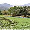 光復馬太鞍濕地-2020-04-72.jpg