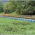 光復馬太鞍濕地-2020-04-71.jpg