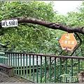 光復馬太鞍濕地-2020-04-79.jpg