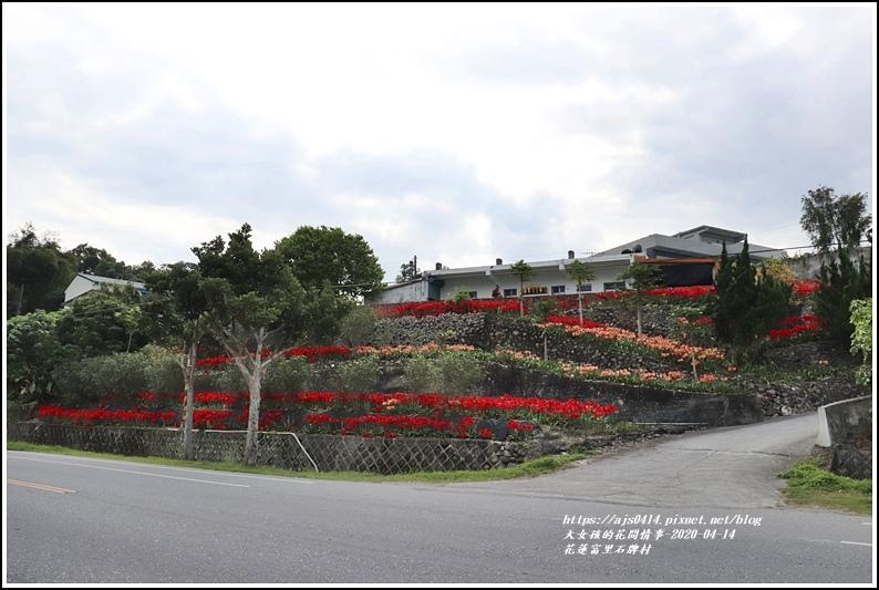富里石碑村孤挺花-2020-04-29.jpg