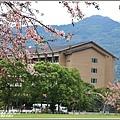 台東鹿鳴溫泉酒店花旗木-2020-04-33.jpg