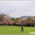 台東鹿鳴溫泉酒店花旗木-2020-04-48.jpg