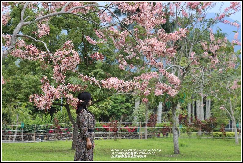 台東鹿鳴溫泉酒店花旗木-2020-04-58.jpg