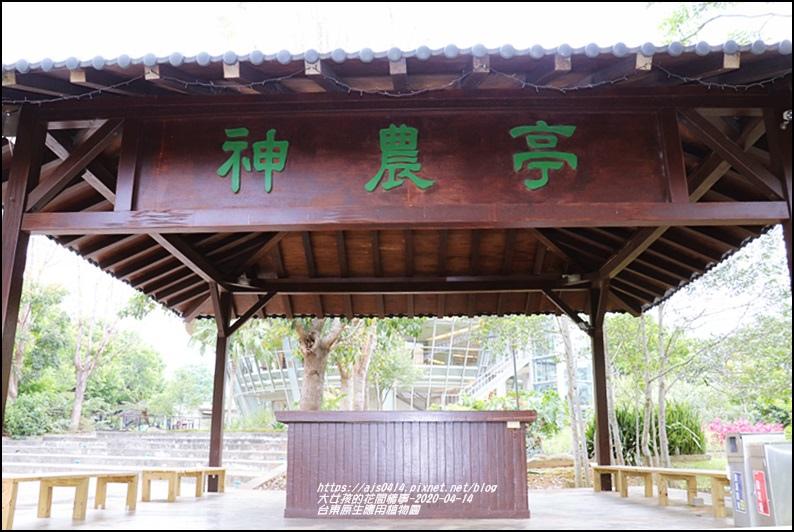 台東原生應用植物園-2020-04-17.jpg