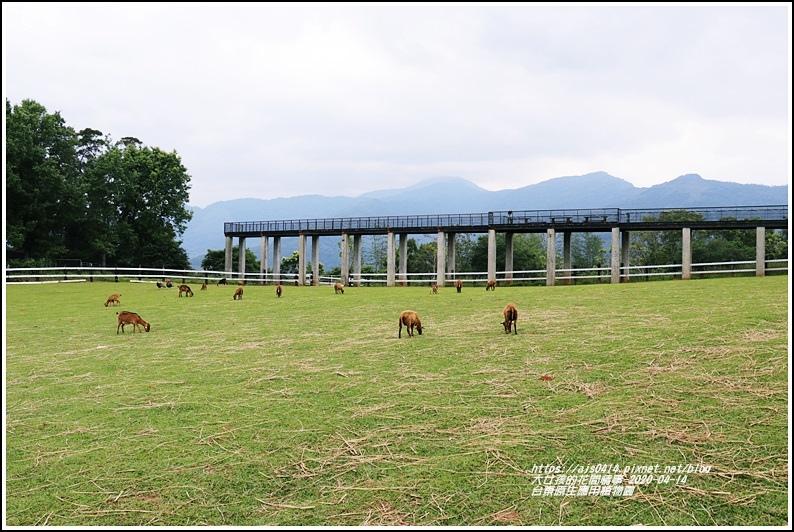 台東原生應用植物園-2020-04-24.jpg