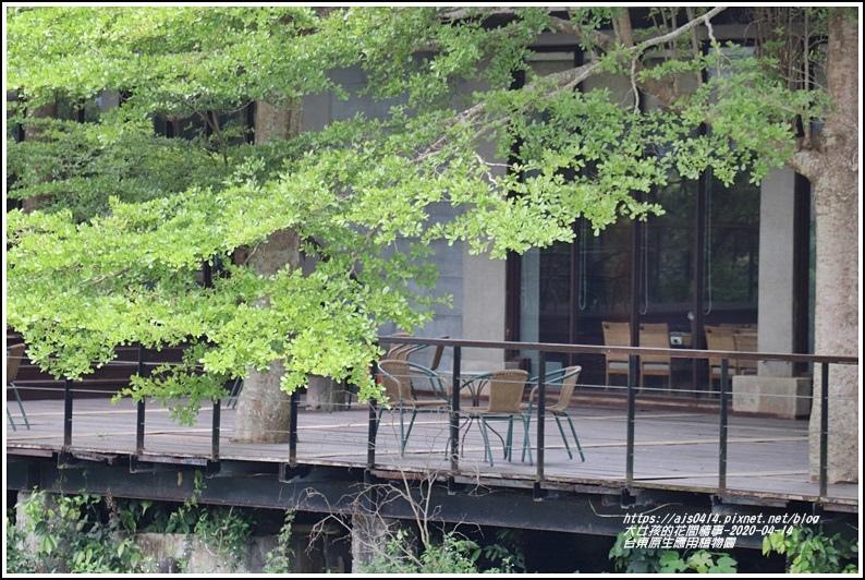 台東原生應用植物園-2020-04-36.jpg