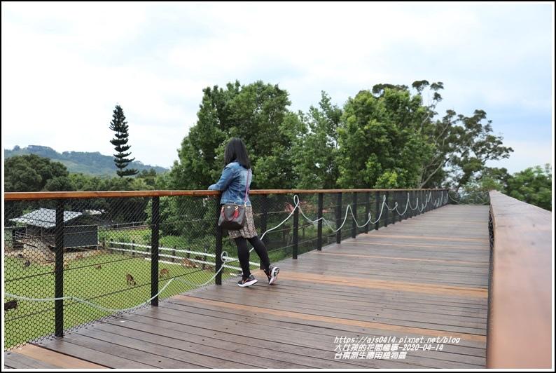 台東原生應用植物園-2020-04-39.jpg
