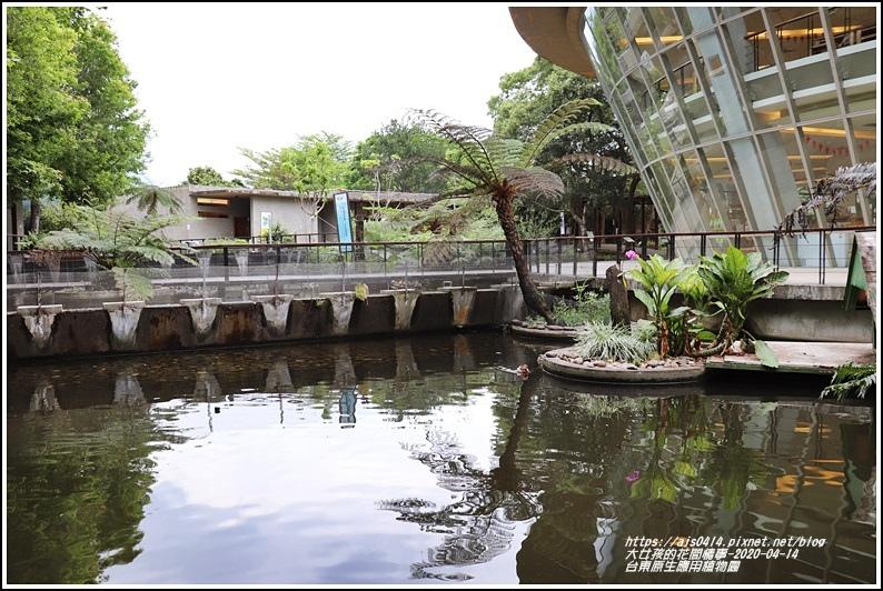 台東原生應用植物園-2020-04-52.jpg