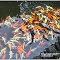 台東原生應用植物園-2020-04-57.jpg