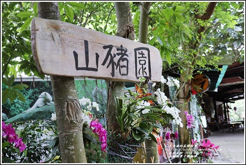 山豬園果子狸咖啡-2020-04-04.jpg