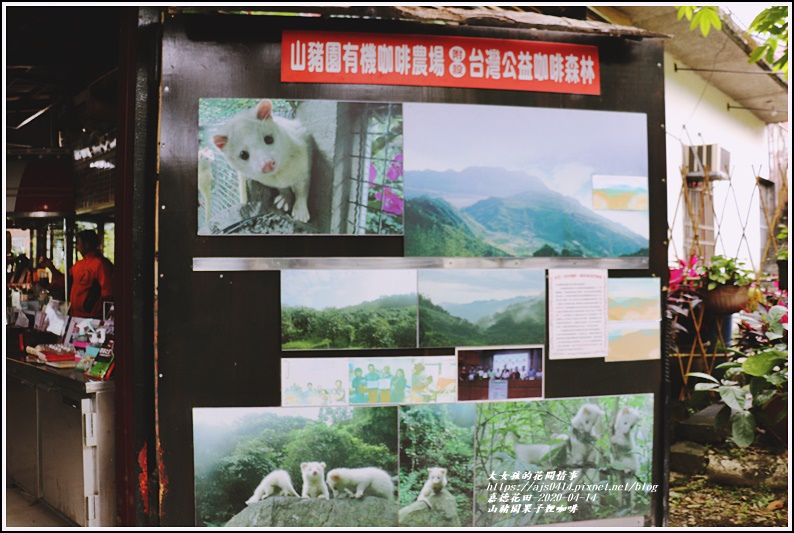 山豬園果子狸咖啡-2020-04-19.jpg