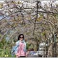 嘉德萱草花田(紫藤)-2020-03-12.jpg