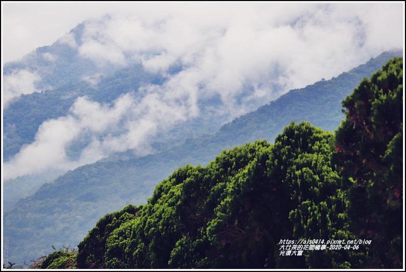 光復大富路段松柏-2020-04-10.jpg