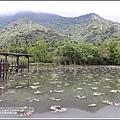 吉安蓮城蓮花園-2020-05-19.jpg