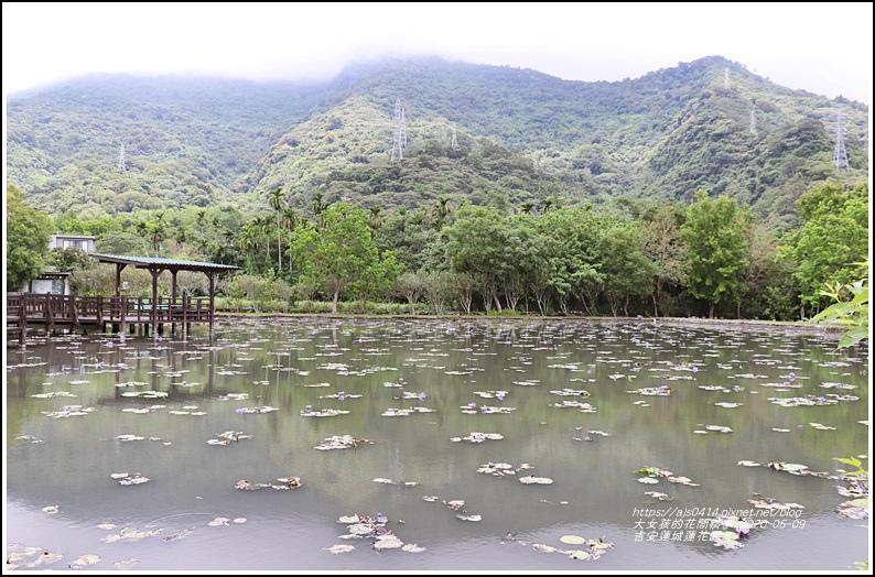 吉安蓮城蓮花園-2020-05-24.jpg
