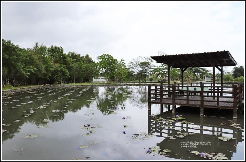 吉安蓮城蓮花園-2020-05-39.jpg
