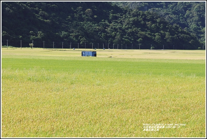 卓富公路之美-2020-06-08.jpg