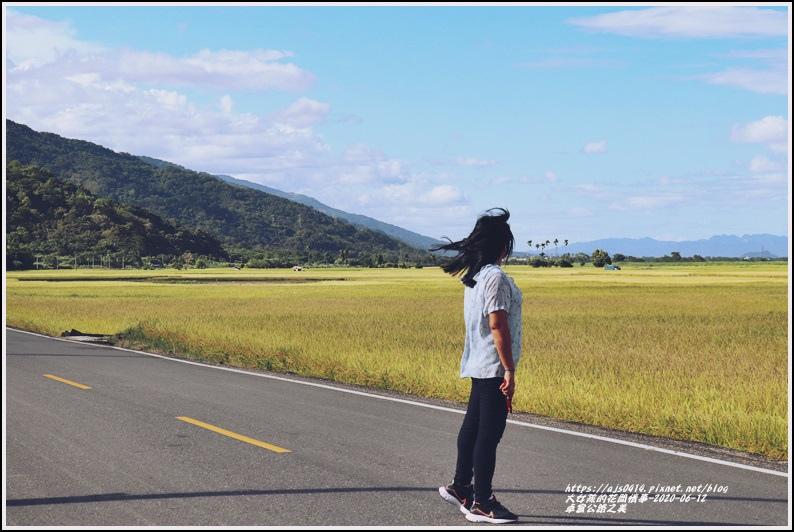卓富公路之美-2020-06-22.jpg
