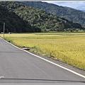 卓富公路之美-2020-06-28.jpg