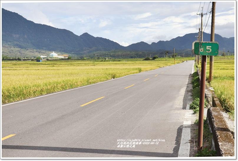 卓富公路之美-2020-06-39.jpg