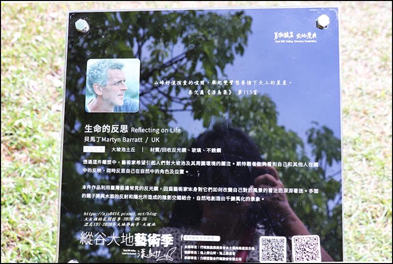 漂鳥197-2020年大地藝術季(大坡池)-2020-06-07.jpg