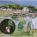 漂鳥197-2020年大地藝術季(大坡池)-2020-06-04.jpg